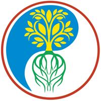 Vitalis Kinesiologie Praxis - Logo